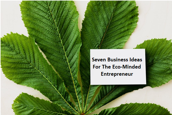 Seven Business Ideas For The Eco-Minded Entrepreneur